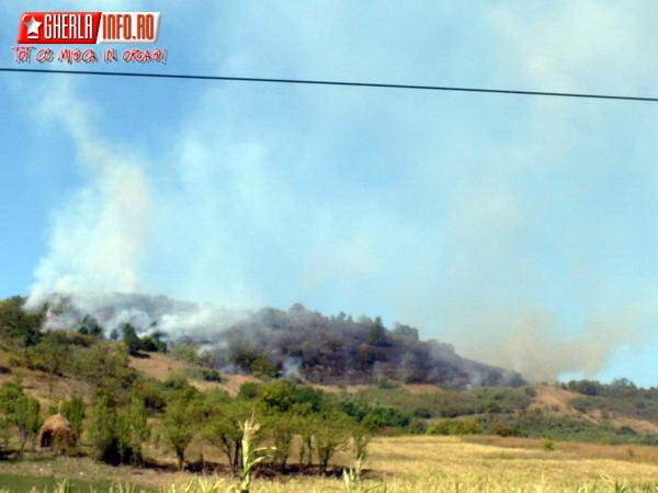incendiu vegetatie gherla fizesu gherlii cluj pompieri