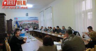 sedinta consiliul local gherla primar viceprimar cluj