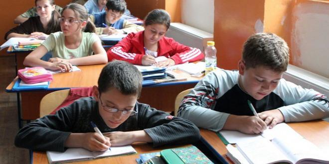 evaluare nationala elevi teste