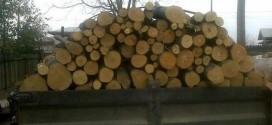lemne transport cherestea
