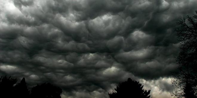 furtuna nori