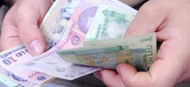 portmoneu bani