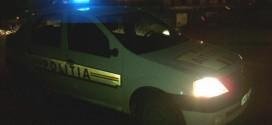 politie noaptea masina