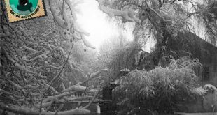 gherla iarna parc 1942