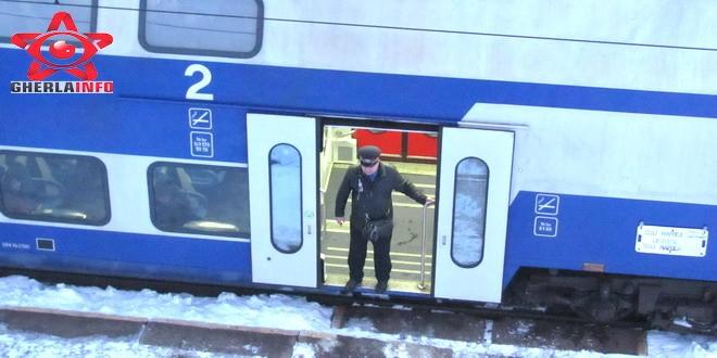 tren iarna zapada