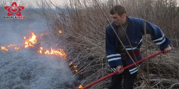 incendiu vegetatie pompier gherla hasdate