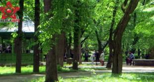 gherla parc