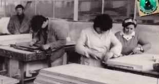 cooperativa lemnul gherla 1988