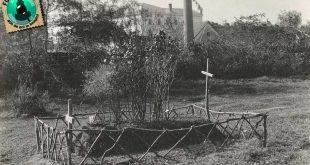 rozsa sandor mormant gherla szamosujvar 1941