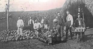 1931 iclod pepeni cluj