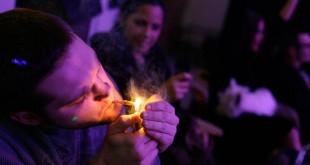 petrecere cannabis droguri