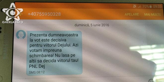 sms alegeri pnl psd dej