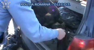 politie droguri portbagaj