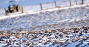 agricultura zapada teren iarna