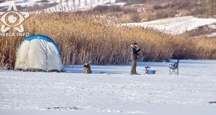 pescuit copca sacalaia pescar lac cluj
