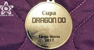 cupa dragon do karate wukf tg mures 2017