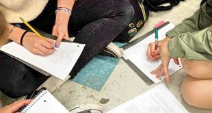 tineri scriere compunere teme