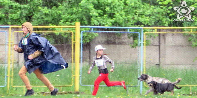 cros gherla copii alergare stadion caine
