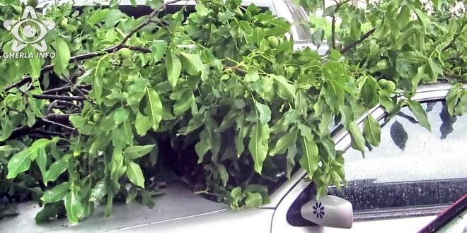 copac masina furtuna gherla