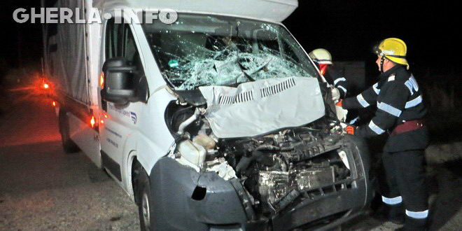 accident masina bivol bunesti