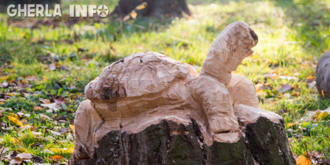 broasca sculptata copac lemn gherla