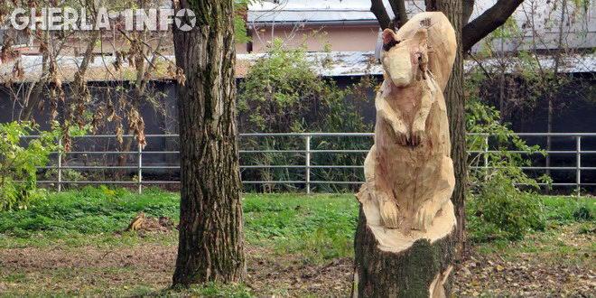 veverita sculptata copac parc gherla