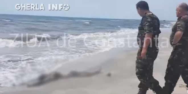 inecat mort plaja