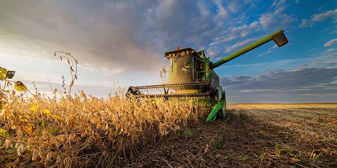 agricultura combina porumb