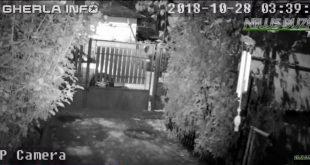 cutremur romania video camera supraveghere