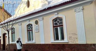 casa memoriala avram iancu tg mures