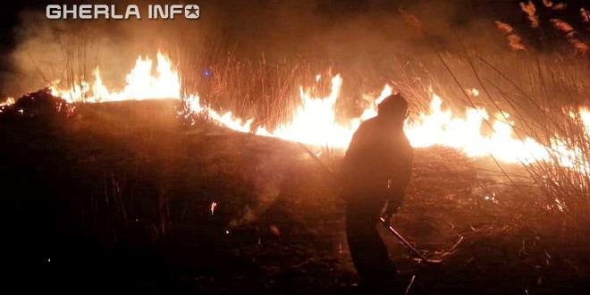 incendiu vegetatie gherla pompieri