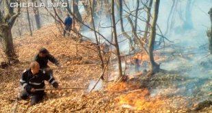 incendiu padure pompieri