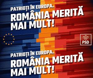 psd alegeri europarlamentare gherla cluj