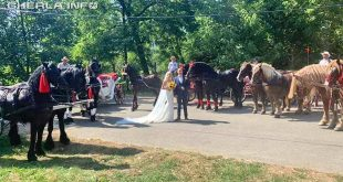 nunta livada cai