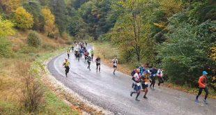 maraton piatra craiului