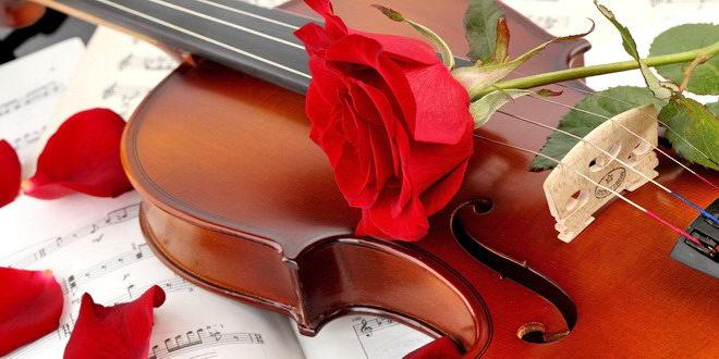 vioara trandafir