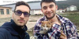 pisica salvata gherla