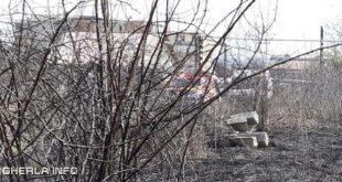 incendiu vegetatie dej