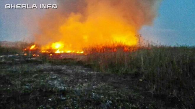 incendiu vegetatie bontida