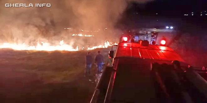 pompieri incendiu vegetatie bontida