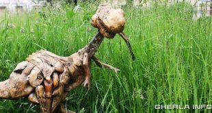 dinozaur lemn galgoczy gherla