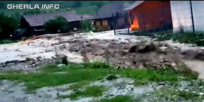 nicula inundatii