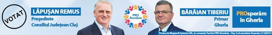 pro romania tiberiu baraian pro romania gherla alegeri locale 2020 candidat