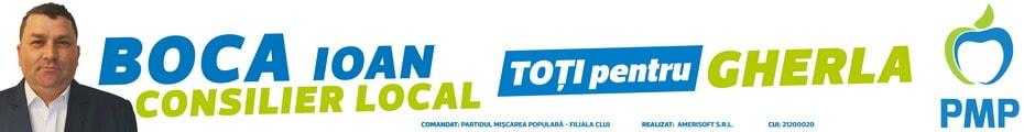 boca ioan pmp gherla alegeri locale 2020