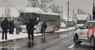 accident nima autobuz stalp rupt