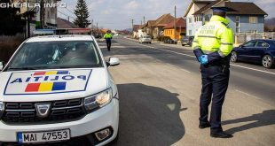 politie bistrita