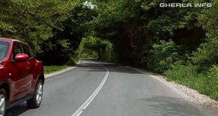 tunel verdeata fizesu gherlii