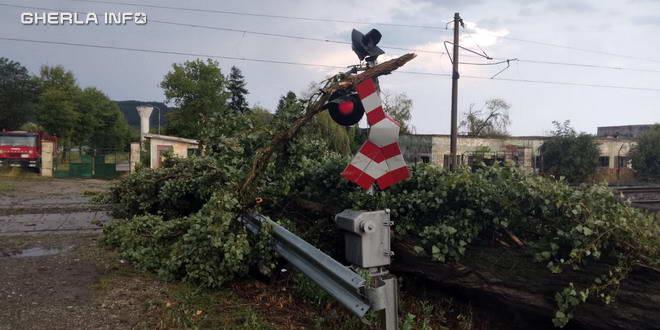 copac furtuna cale ferata bontida cfr