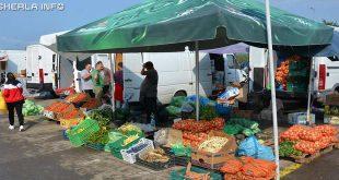 legume agro transilvania cluj