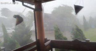 furtuna livada